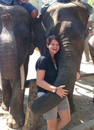 A surprising elephant hug