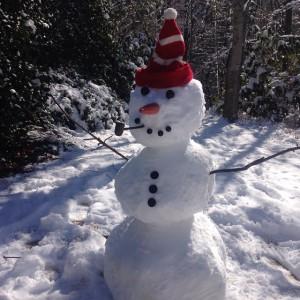 Henry snowman