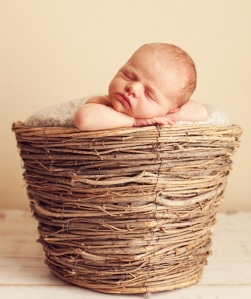 baby-basket2