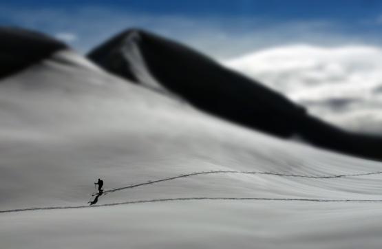 snow lone skier.jpg